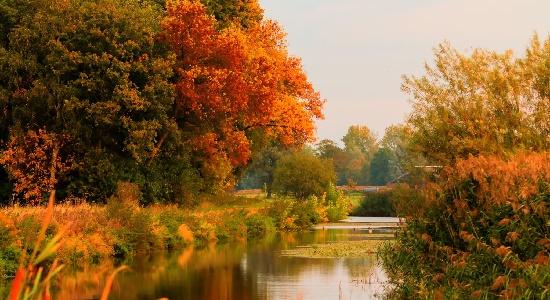 Sfeerfoto van een kanaal in herfst sferen