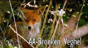 Foto van de film AA-Broeken in Veghel